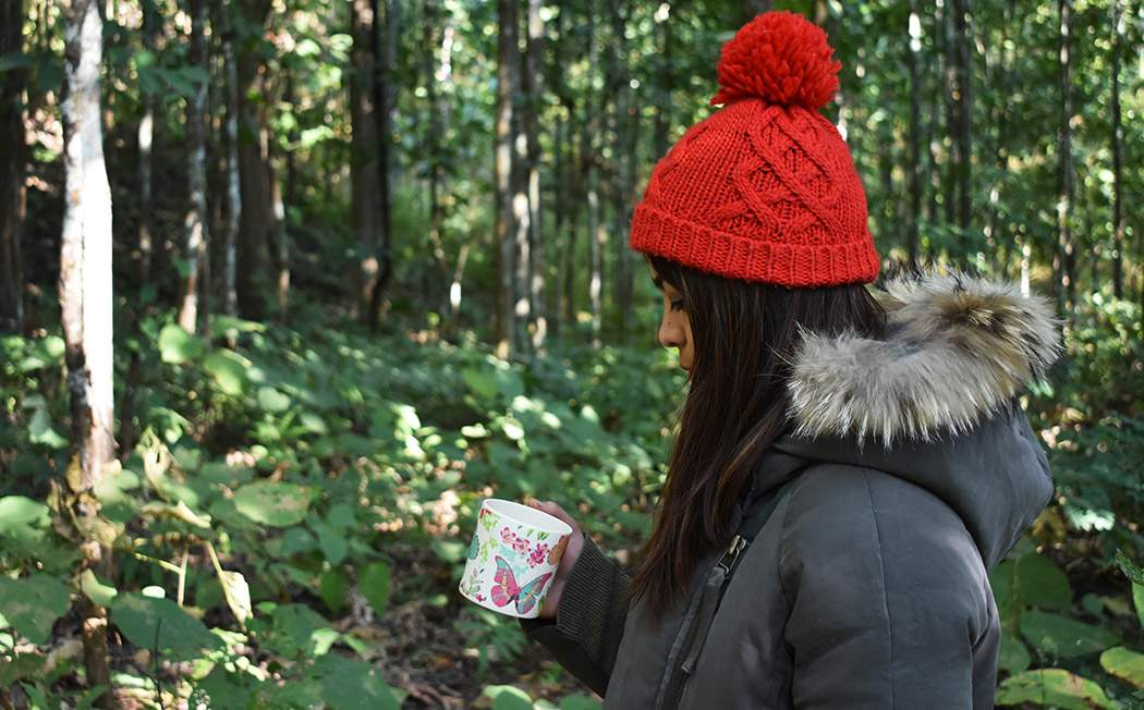 Buy best Darjeeling Tea online